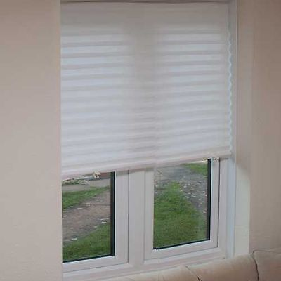 Temporary Window Blinds